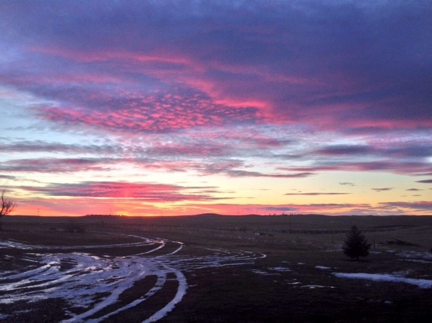 Wyoming Fall and Winter.JPG18