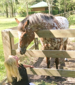 April 2016 Horses 11