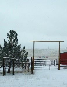 Wyoming Fall and Winter.JPG25